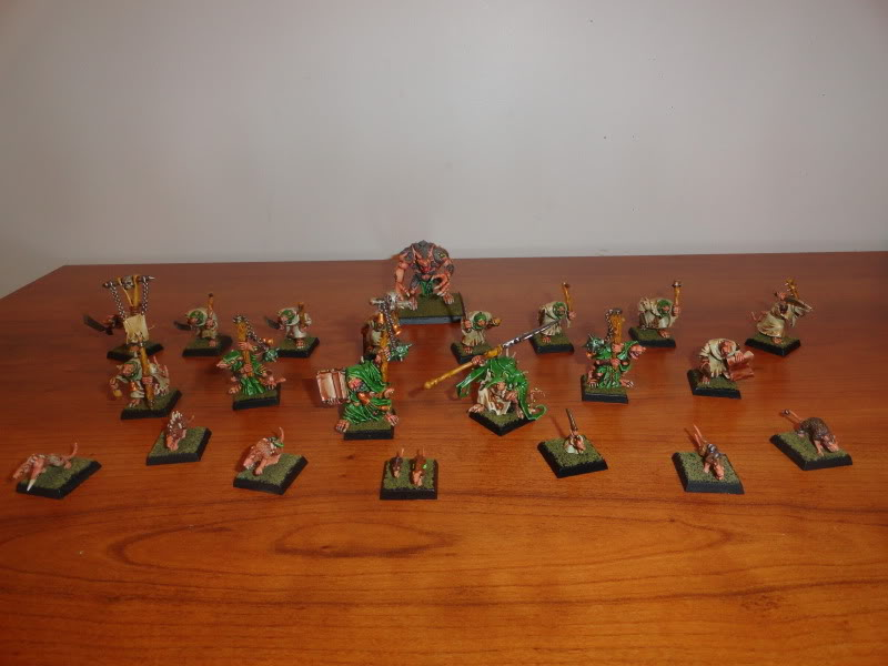 First Post - Finished Clan Pestilens Warband DSC00089