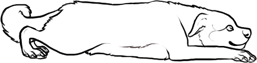 Clovette Kengaldog-1