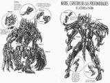 Esquemas de las figuras de Saint Seiya Th_ArmorNiobe