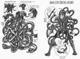 Esquemas de las figuras de Saint Seiya Th_ArmorRaimi