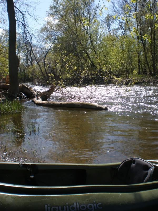 Black Creek 5-8-11 P5080095