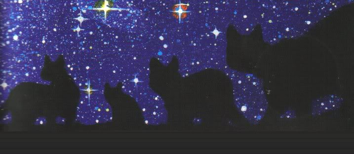 cats.jpg stary image by Differa6194