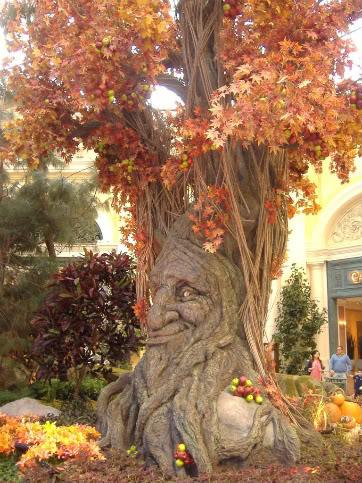 Trees (2) DSCF7087