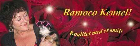 www.chihuahuaengler.com Ramocotest
