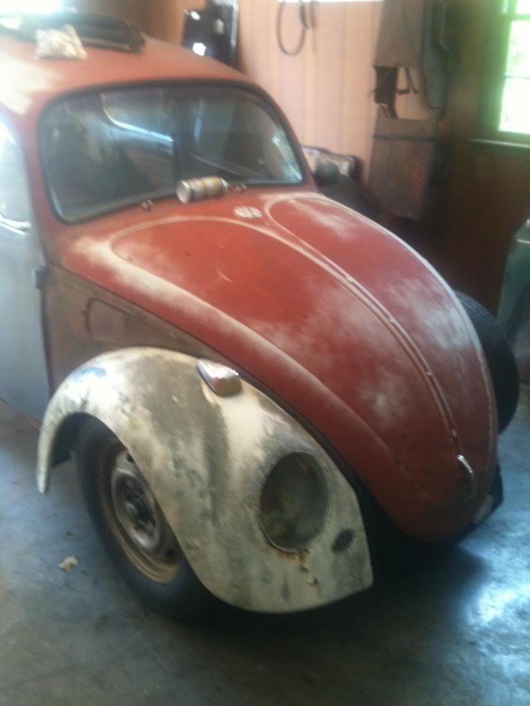 My 1968 VW Beetle IMG951672