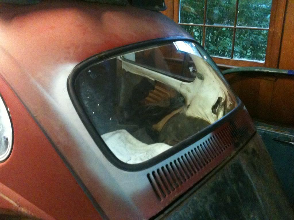 My 1968 VW Beetle IMG959308