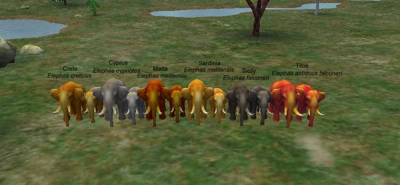 Topics tagged under borneo on User - Made Creations Dwarfelephantscomparisoti8