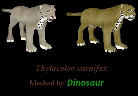 Topics tagged under marsupial on User - Made Creations Thylacoleo_variants