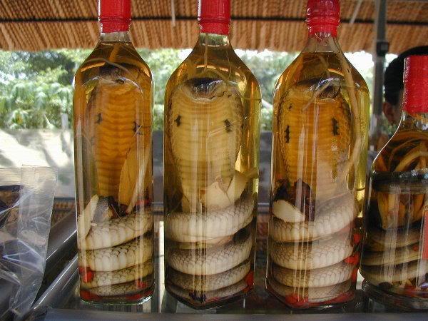 Alcool, hùùùm cool? (pour les courageux) Serpent-alcool