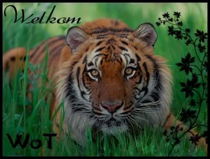 World Of Tigers - Portale Welkom