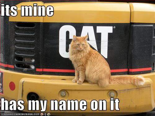 just a few I like Funny-pictures-your-cat-owns-a-larg