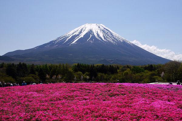 [Du lịch] 9 địa điểm ngắm núi Phú Sĩ đẹp nhất Best-places-to-photograph-mount-fuji-1030