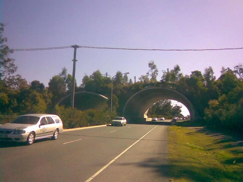 animal road over pass Animal-over-pass