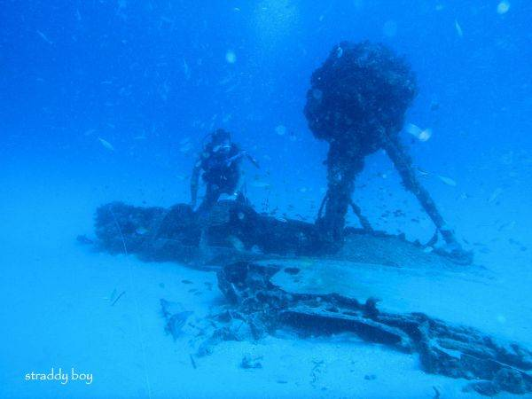 DC3 dive site off Stradbroke Island. Dave%201_zpsiolppavg