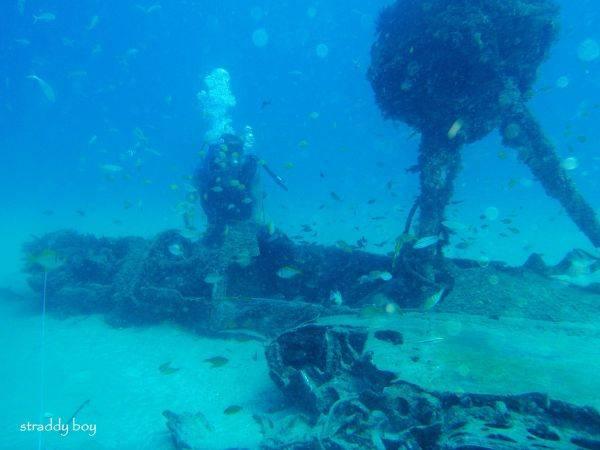DC3 dive site off Stradbroke Island. Dave%202_zpsrpin7s7g