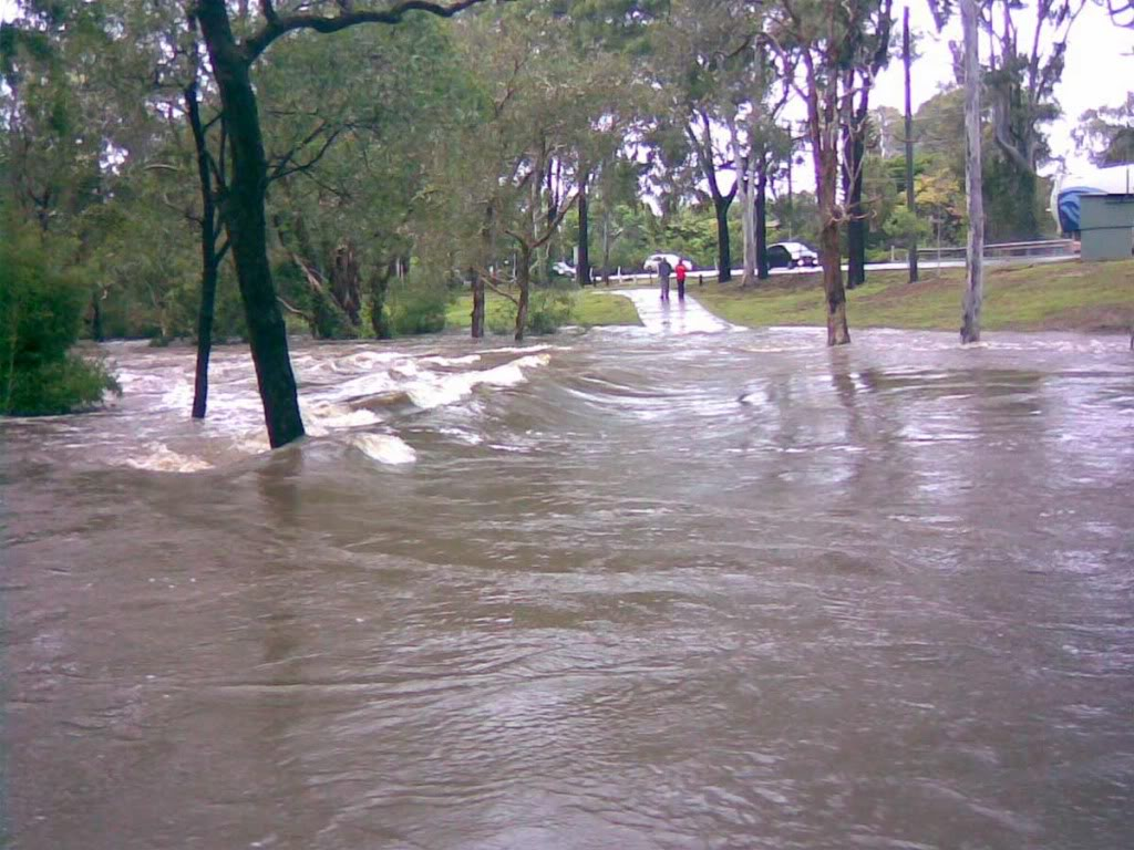 Hiliards creek fishing in suburban Brisbane Flooded-park
