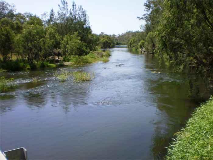 Fernvale,one of the Best freshwater swimming spots near brisbane Fern-5