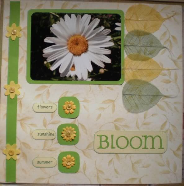 bloom 006593x600-1