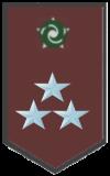 Colonel  Clan Leader