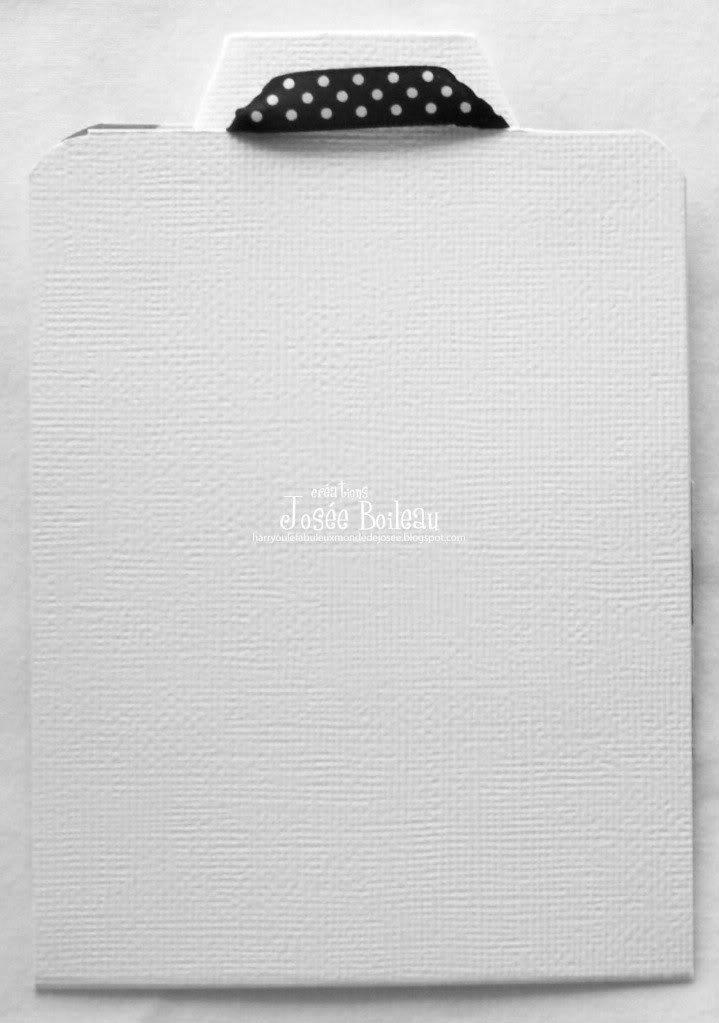 3 Juin......Carte Veston chemise DSC00356_modifi-1