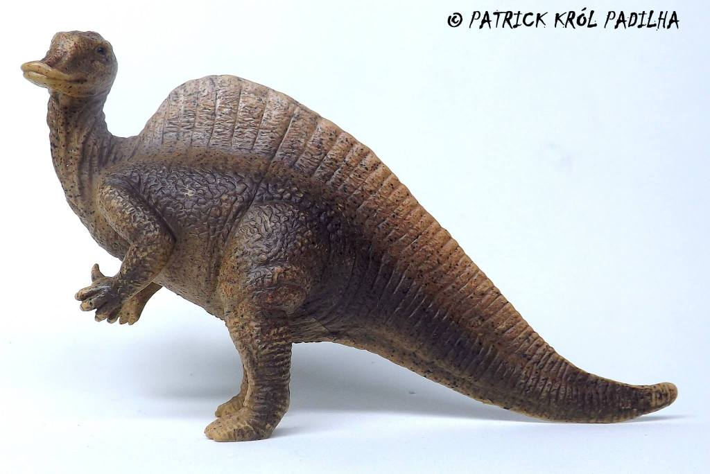 DeAgostini Dinosaurs 1559352_10203540128082406_7054020478455806002_o