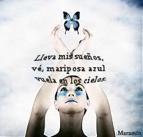 CADENA DE HAIKUS  - Tema las mariposas - VuelaMariposa2