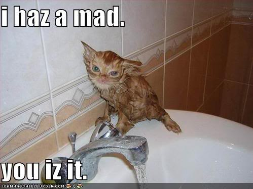 Lolcats thread! - Page 6 Funny-pictures-wet-mad-cat-sink