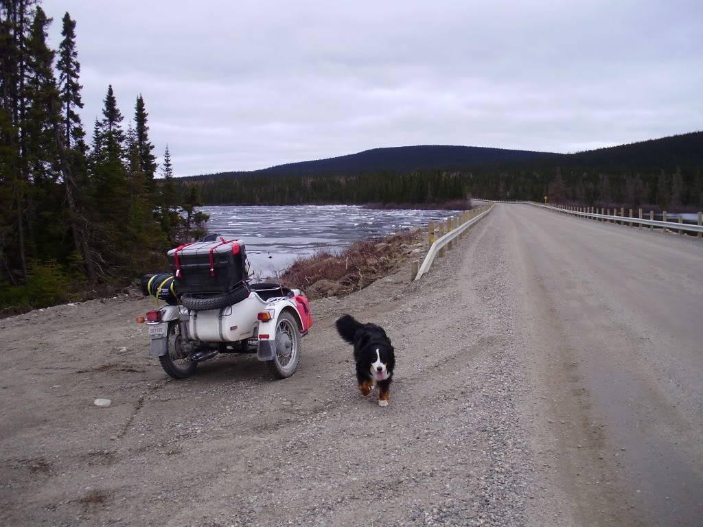 Images de vos vieux Flats et vieux ponts... - Page 2 TundraRunLabrador2009098