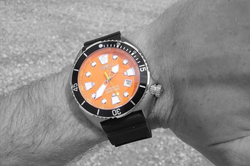 Watch-U-Wearing 7/17/10 DSC05582