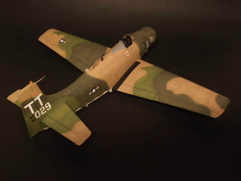 A-1J Skyraider  - Σελίδα 2 DSCF6279