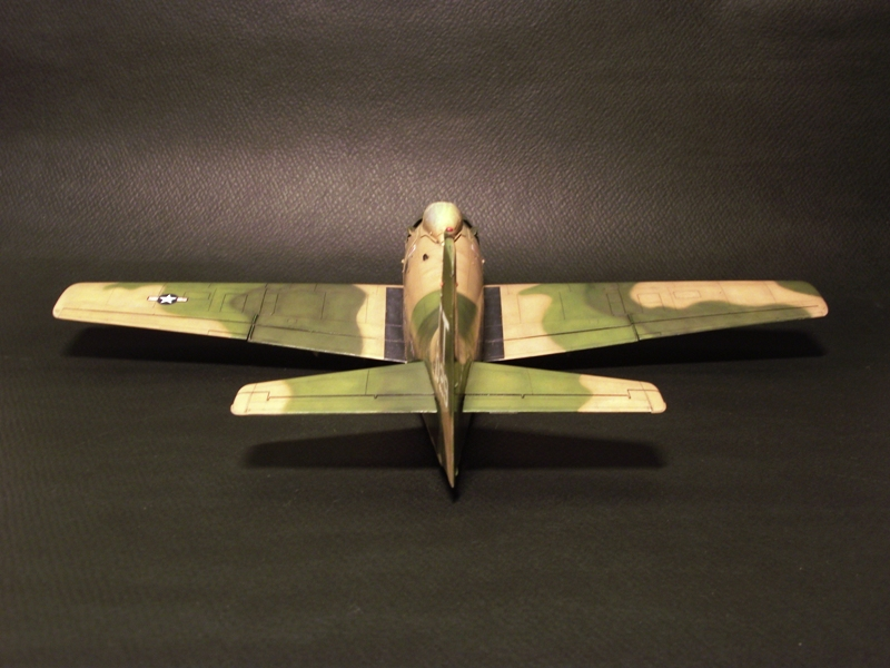 A-1J Skyraider  - Σελίδα 2 DSCF6443