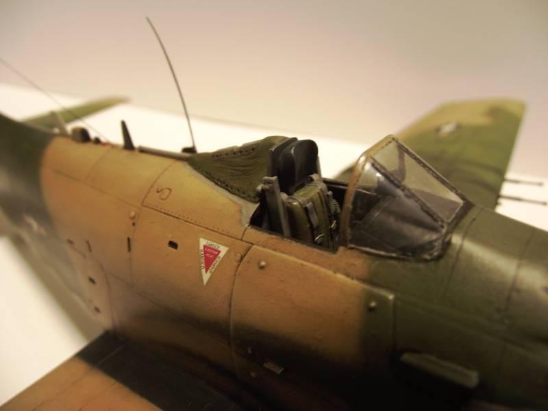 A-1J Skyraider  - Σελίδα 3 DSCF7371_zpsd7d8de67