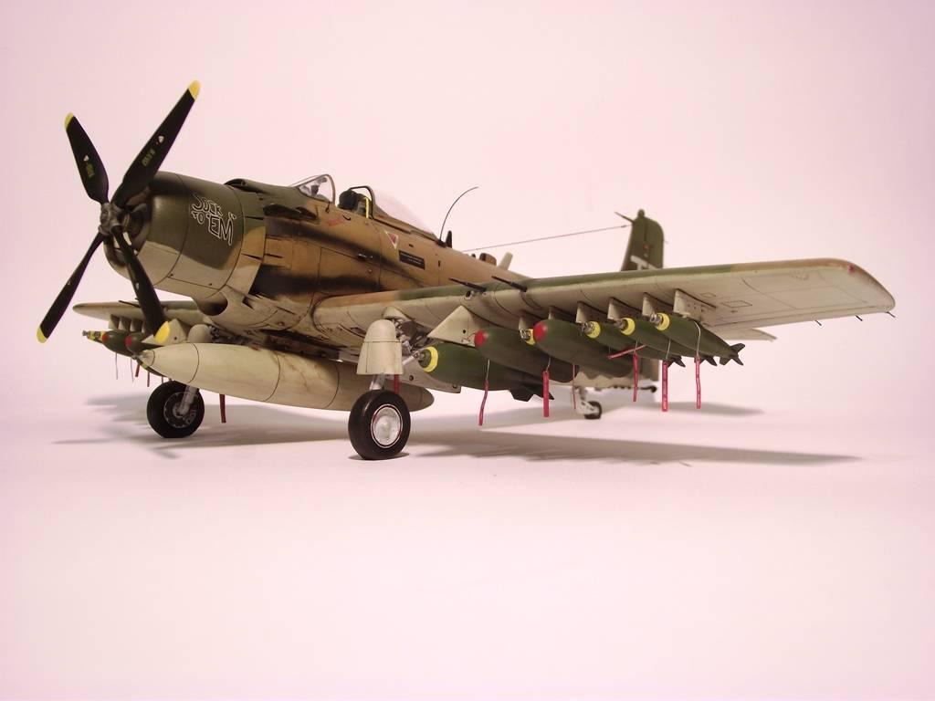 A-1J Skyraider  - Σελίδα 3 DSCF7598_zps1501fc58