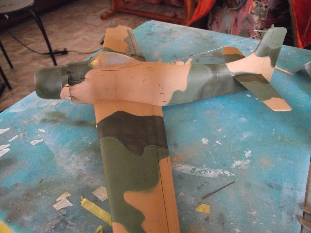A-1J Skyraider  DSCF6044