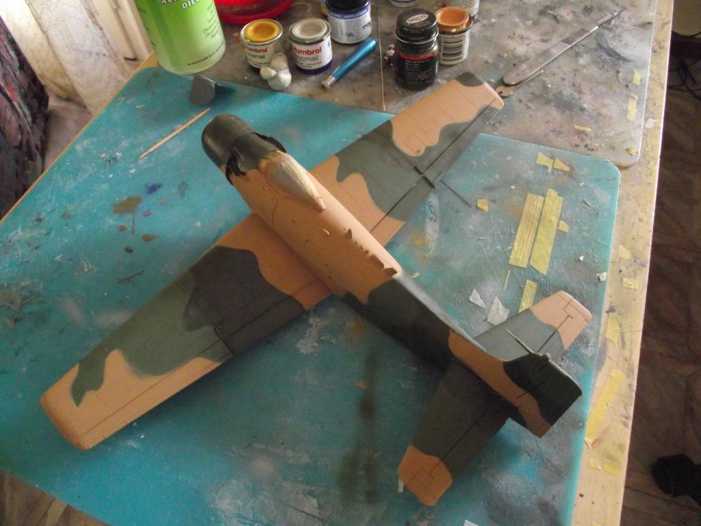 A-1J Skyraider  DSCF6049