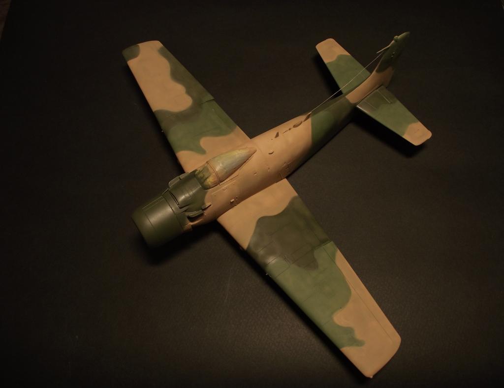 A-1J Skyraider  DSCF6052-1