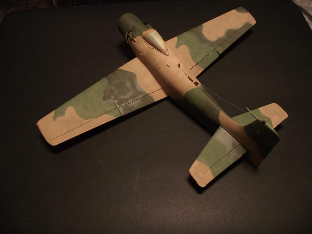 A-1J Skyraider  DSCF6067