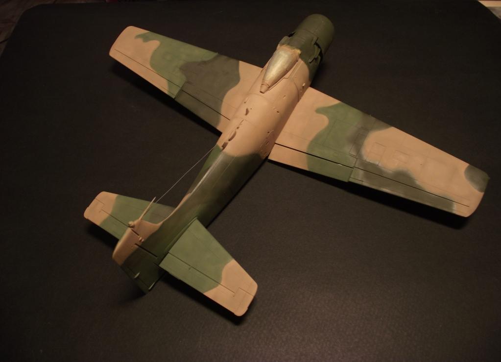 A-1J Skyraider  DSCF6068