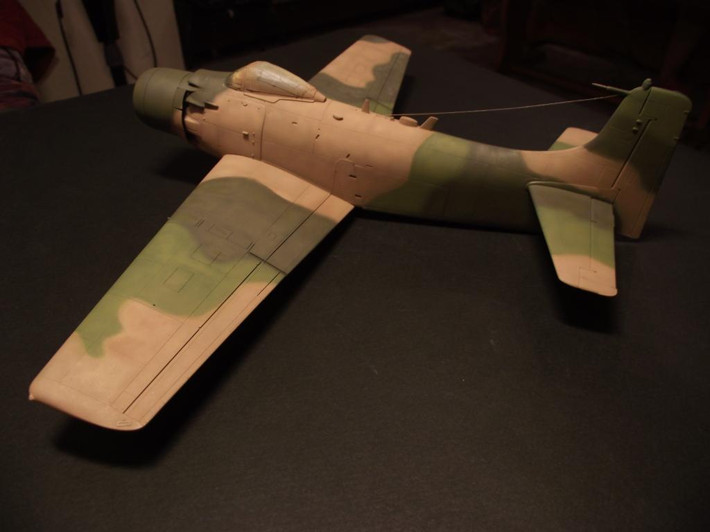 A-1J Skyraider  DSCF6078
