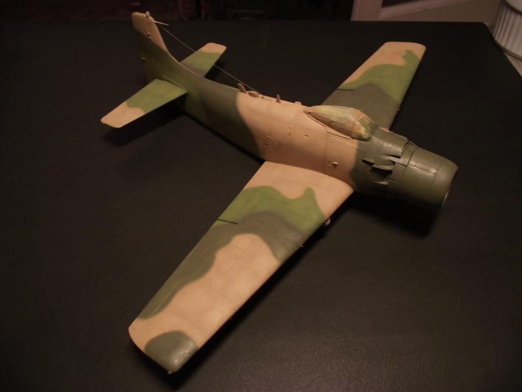 A-1J Skyraider  DSCF6079