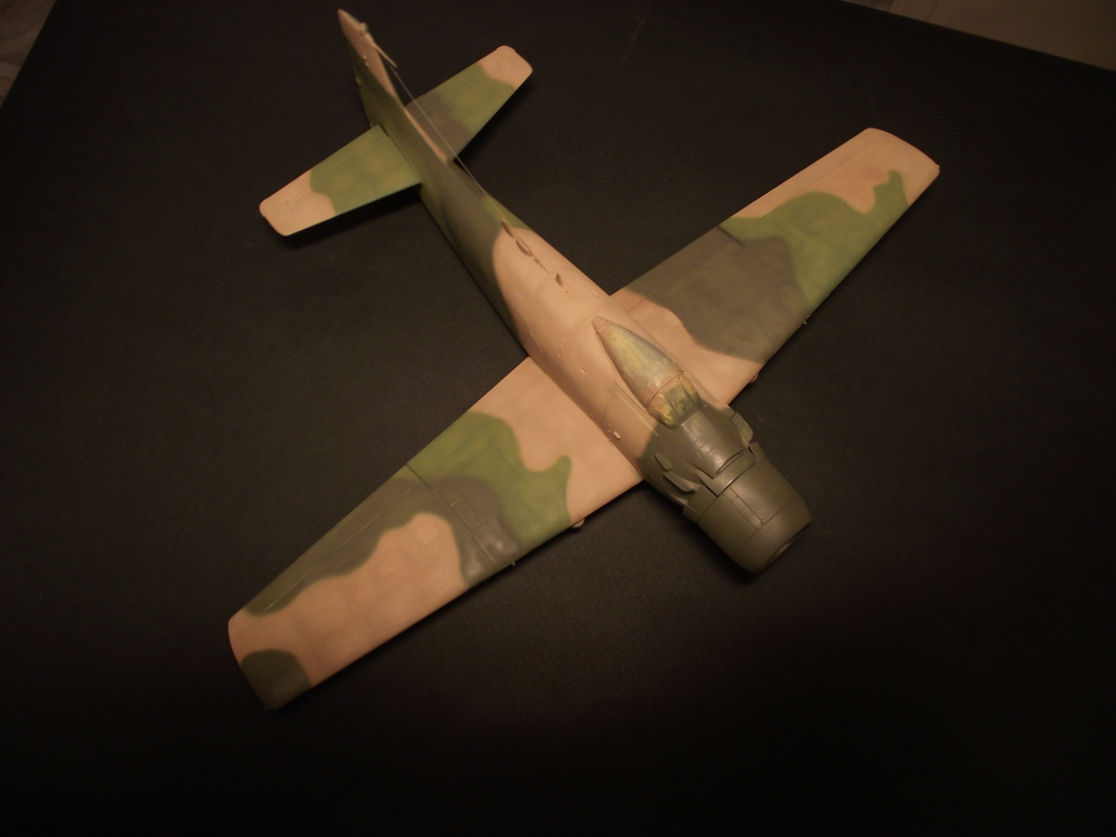 A-1J Skyraider  DSCF6080