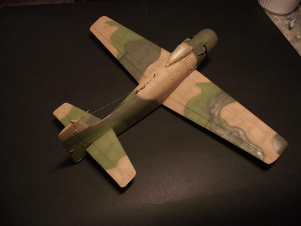 A-1J Skyraider  DSCF6083