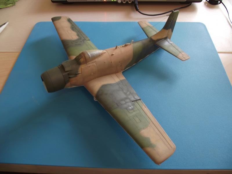 A-1J Skyraider  - Σελίδα 2 DSCF6132