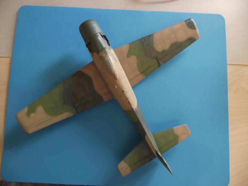 A-1J Skyraider  - Σελίδα 2 DSCF6146