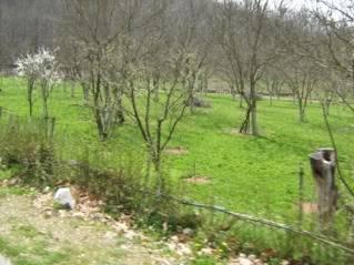Babino - 12.04.2009 Babino083