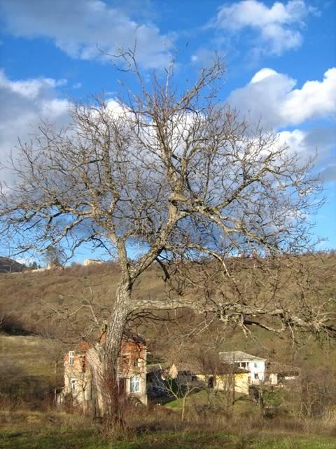 Скопска Црнагора... 7.01.2010 Bozik2010017