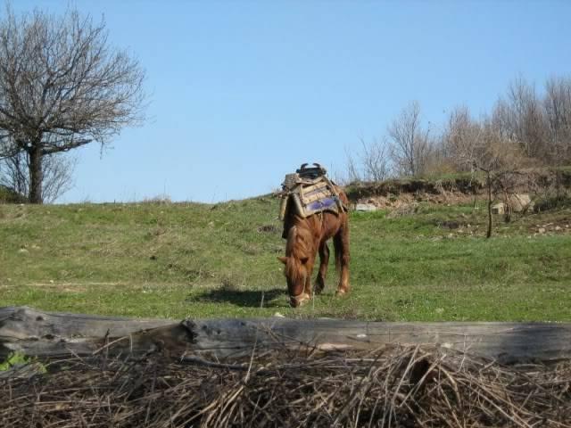 15,03,2009 Викенд вожња до Катланово и с.Градманци Gradmanci017