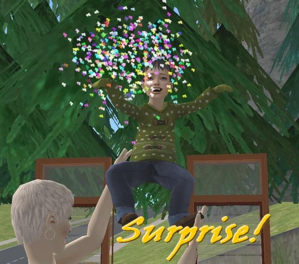 Alet's Simmies Surprise