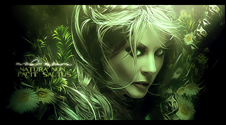GFX - Tutoriais Banner-mothernature