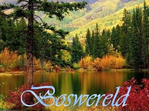 Boswereld